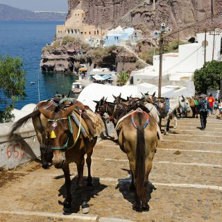 thira-old-port
